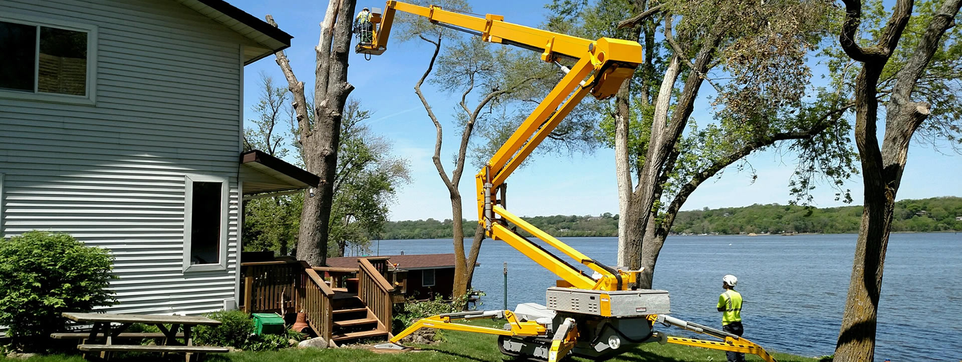 Tree Removal Experts Greater Orange County Seminole County Lake County