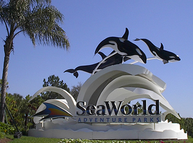 Sea World Orlando Tree Care Service